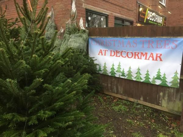 Decormar Hardware Wall Heath Christmas trees